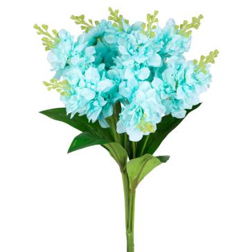 Гиацинт голубого цвета